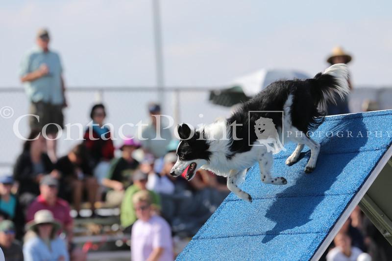 Cyno_2012_Sunday-1701