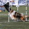 Cyno_2012_Sunday-1695