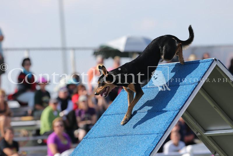 Cyno_2012_Sunday-1574