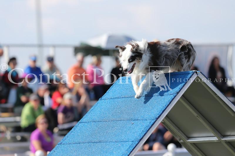 Cyno_2012_Sunday-1461