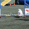 Cyno_2012_Sunday-2195