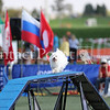 Cyno_2012_Sunday-2199