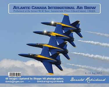 Cover of my 200 page 8x10 full color book of the 2012 Summerside Air Sow