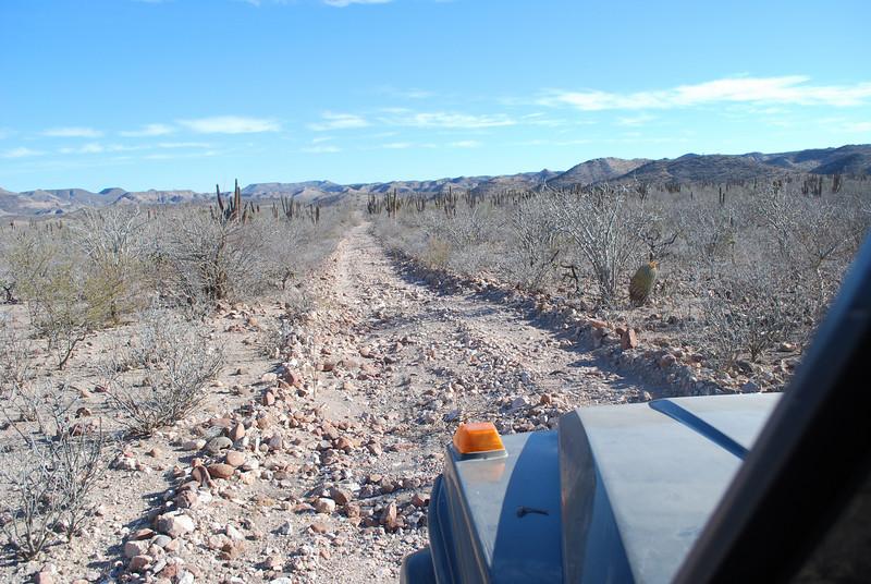 just another bumpy Baja road