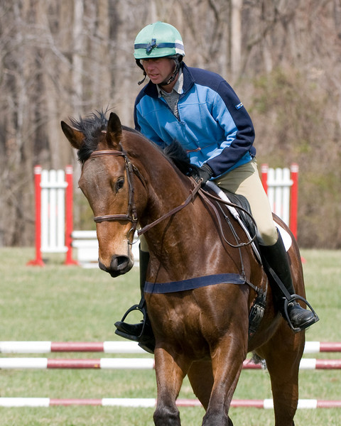 Steuart Pittman and Muse at the Marlborough Horse Trials Jumper Derby.
