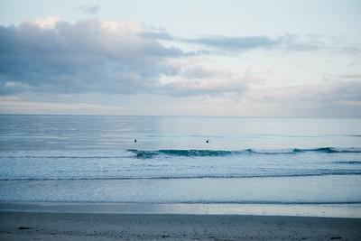 Torrey Pines State Beach