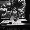 20170729   Leica MP   Sonnar   HP5+ 029