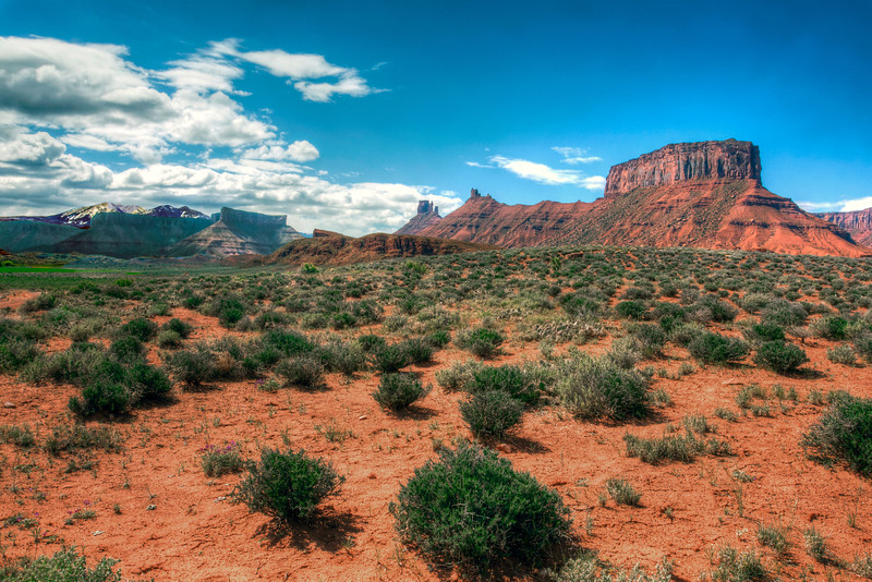 La Sal Mountains from the desert 2