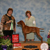 UPFRONT N LYONS GOBLIN OF FIRE - Best in Sweepstakes