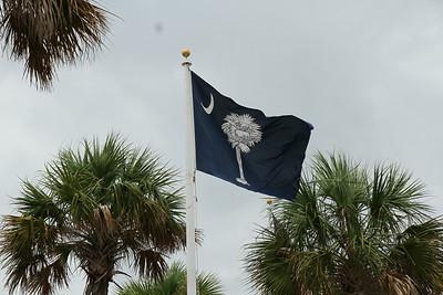 South Carolina State Flaf