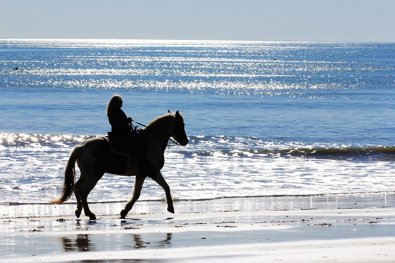Horse Rider on the Beach