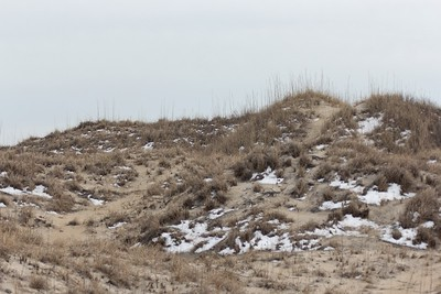 Dunes with snow