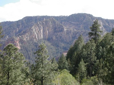 Junipine Resort in Oak Creek Canyon