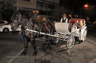 0209_HorseCarriageRide_2093