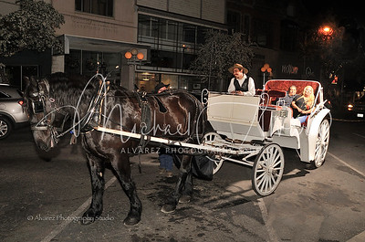 0209_HorseCarriageRide_2092