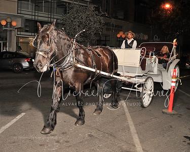 0209_HorseCarriageRide_2094