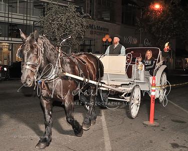 0209_HorseCarriageRide_2086