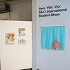 Veni, Vidi, Vici. SACI International Student Show