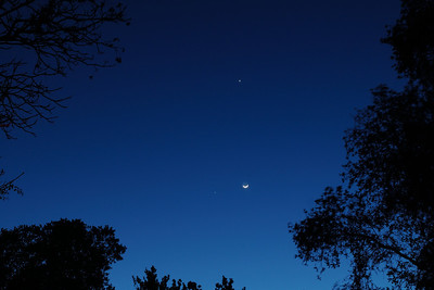 A Celestial Love Triangle: Venus, Jupiter and the Moon