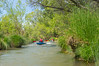 Verde River Institute Float Trip, Tapco to Tuzi, APS, 4/17/15