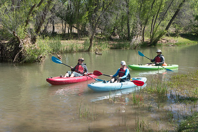 Verde River Kayak Adventure - APS - 4/17/15