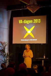 VA-dagen 2013
