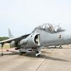 The Harrier