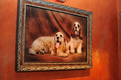 Photograph of Rocker Vince Neil's dogs in this painting at the opening his Tres Rios cantina and tequila bar in the Las Vegas Hilton Casino Resort.  Tres Rios Tequila is Vince Neil's new single agave tequila made at Tequila Tlaquepaque under the care of the Sanchez Martin Family in Guadalajara, Mexico. This rocker's tequila comes as Tres Rios Silver, Tres Rios Reposado and Tres Rios Anejo. Photograph by Las Vegas photographer Mark Bowers.