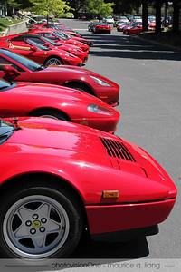 A rainbow of Ferrari colors....