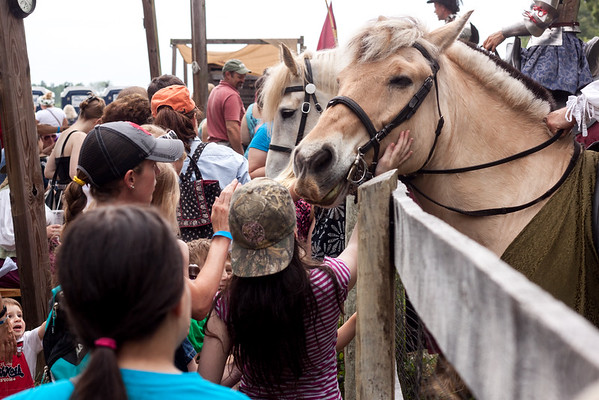Petting the Jousting Horses