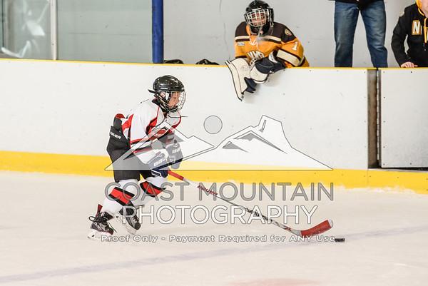 HC Hockey 011