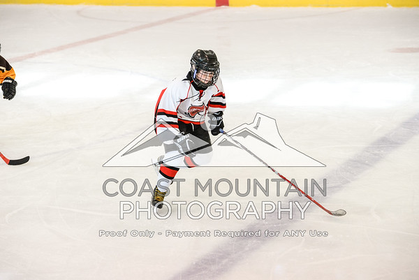 HC Hockey 008