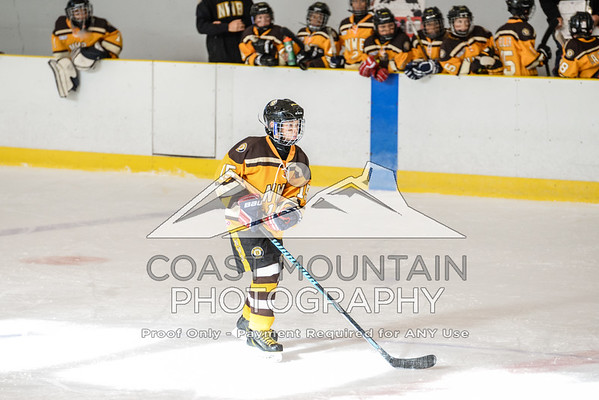 NW Bruins 006