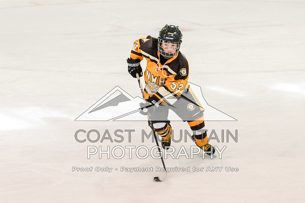 NW Bruins 023