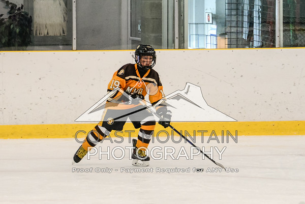 NW Bruins 011