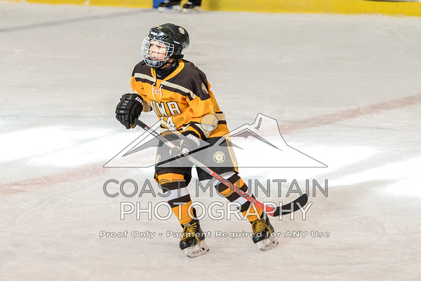 NW Bruins 012