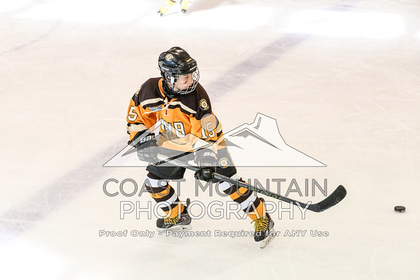 NW Bruins 010