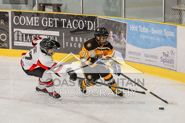 NW Bruins 017