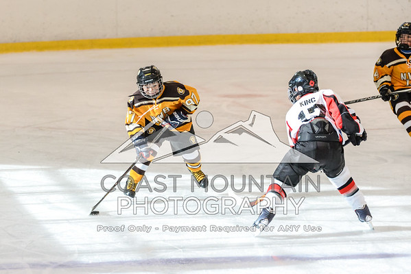 NW Bruins 009