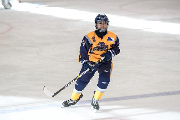 2007_Delta_Icehawks-11