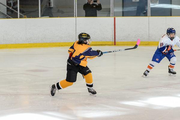 2007_Delta_Icehawks-17