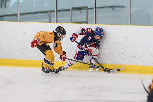 2007_PNW_Hockey-18
