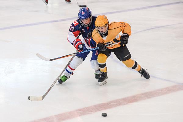 2007_PNW_Hockey-8