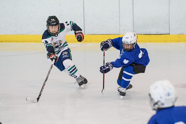2008_Van_Leafs-6