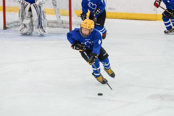 2008_Van_Leafs-20