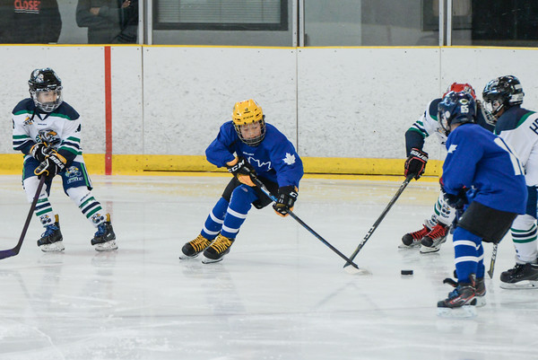 2008_Van_Leafs-2