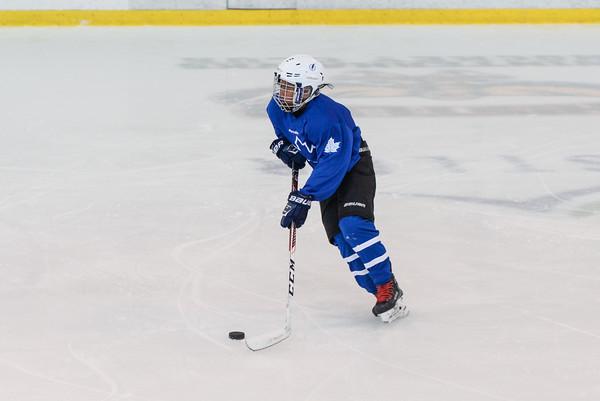 2008_Van_Leafs-7