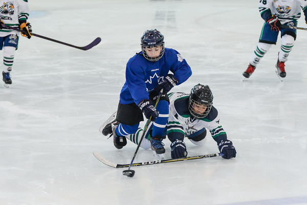 2008_Van_Leafs-3