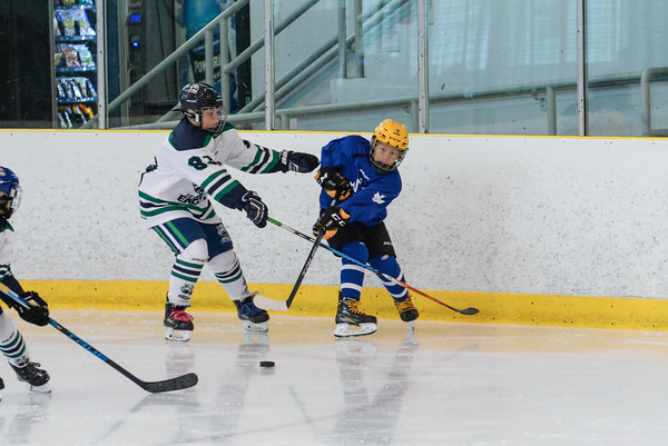 2008_Van_Leafs-4