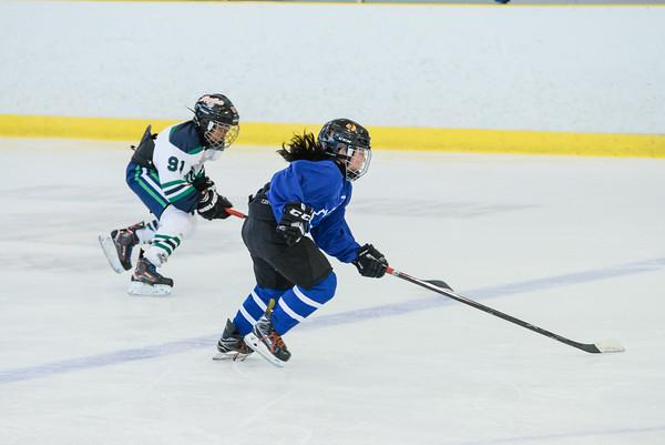 2008_Van_Leafs-13